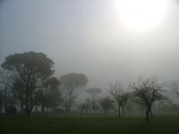 Fog - Les Landes, Maurioac