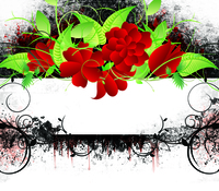 Grunge Rose Frame