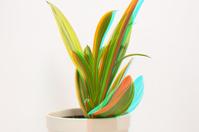 3D plant in pot