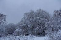 peaceful winter landscape 4