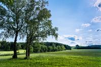 Summer Landscape - Bavaria