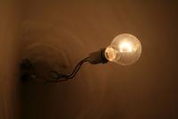 A nude bulb