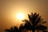 Golden Arabian Sunset
