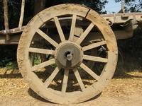 Cart-wheel 1