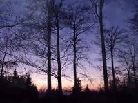 Sundown 3