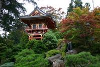 Garden of Japan
