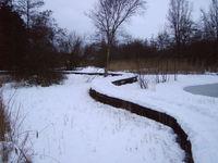 snow in alkmaar06