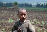 The Children of Rwanda 4