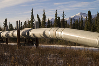 Alaskan Pipeline 1