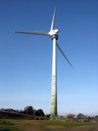 windy miller 1