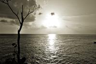 Jamaican's sunset