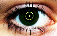 The 360 Eye