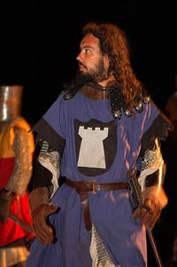 medieval knight 1
