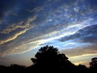 curious sky