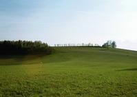 grassfield #1