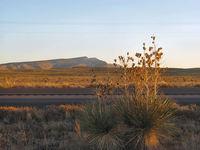 southwestern images 9
