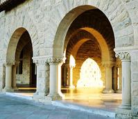 Illuminated Archs