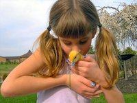 Aimee loves her ducks
