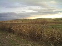 Autumn landscape - Transylvani
