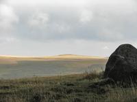 the stone 1