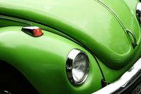 green beetle