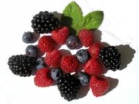 fruit II
