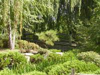 Denver's Asian Garden 1