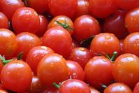Cherry Tomatos 3