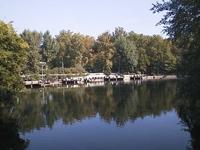 Varosliget lake