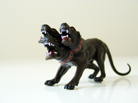 wild dogs 2