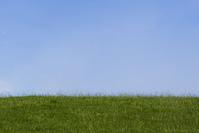 green gras, blue sky
