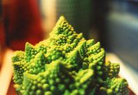 ufo-broccoli