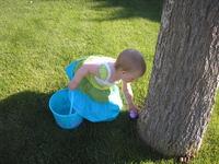 Easter Egg Hunting 1