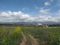 Quail Hill Loop