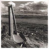 Shovel leaning on fence