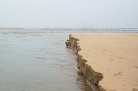 Pondy Sand