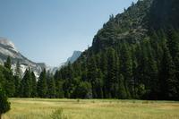 Yosemite Park 4