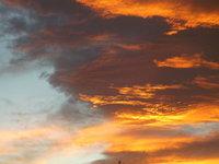 Golden Sky Valley