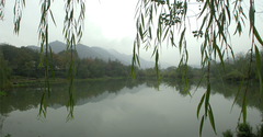 Xihu Evening 1