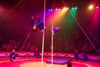 Circus Jump