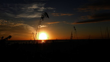 Sunset in Florida 3