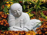 Little Monk 5