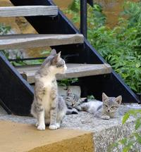 watching mom
