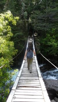 old wooden bridge 4