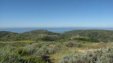 Bommer Ridge Ocean View