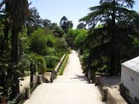 Bothanical Gardens 1
