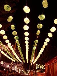lights in park