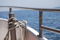 Ship Knot