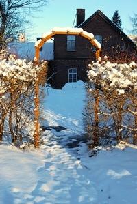 Garden gate in the winter