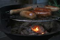 shiny sausages